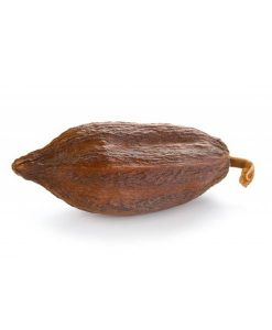 Cacaopods