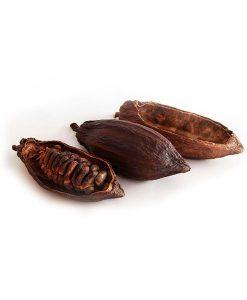 Cacaopeulen